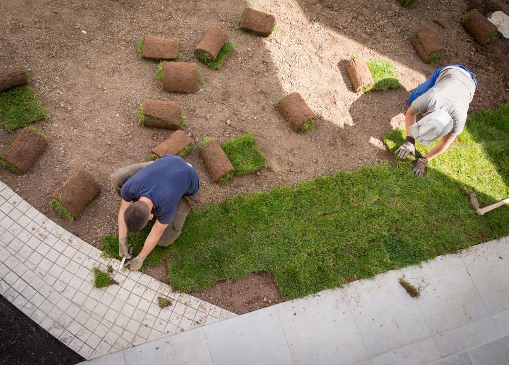building a backyard